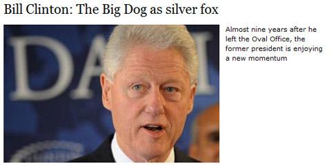 Silver Fox480