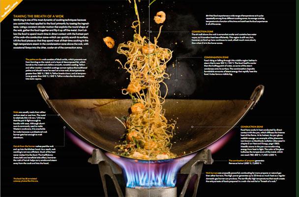Modernist cuisine the tarragon times for Amazon modernist cuisine