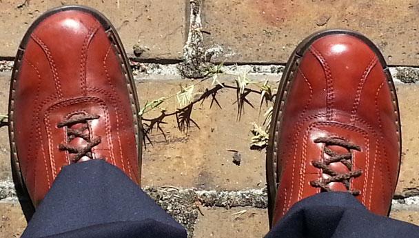 Shoes-608