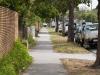 Street-crop-again